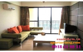Apartment for rent in Sai Gon Pearl