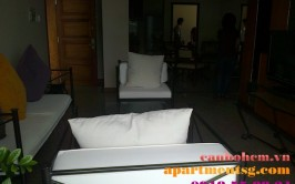 Apartment for rent Hoang Anh Gia Lai 3 - New Sai Gon