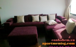Penthouse apartment for rent in Panorama Phu My Hung, river view