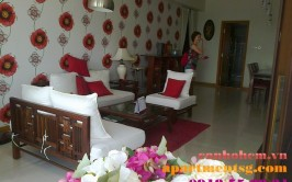 Apartment for rent in Sai Gon Pearl Ruby 2, 11th floor - apartment in saigon pearl