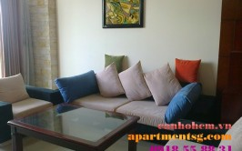 Apartment at Grandview Phu My Hung for rent