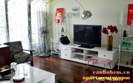 Panorama apartment for rent in Phu My Hung, Ho Chi Minh City