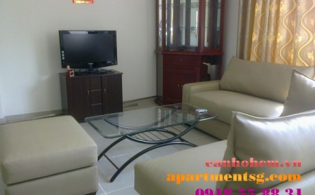 Parkview apartment full furnished for rent - Apartment for rent at Phu My Hung