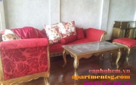 France's style apartment for rent at Greenview Phu My Hung 900 USD/month